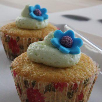 Cramberry muffin